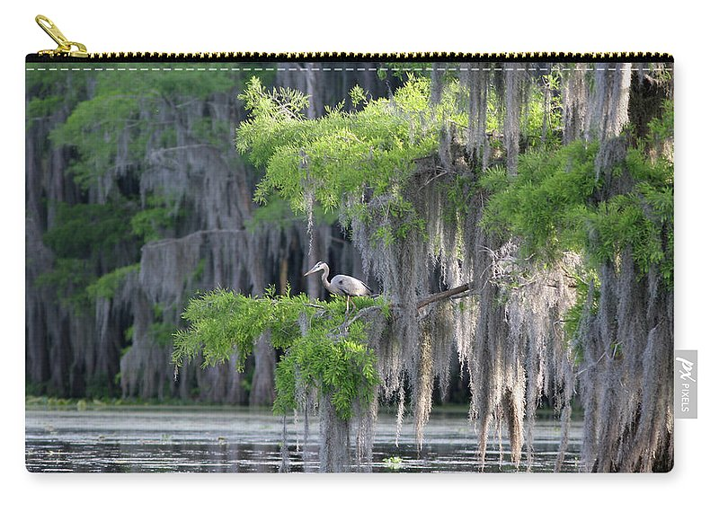 Scenics Carry-all Pouch featuring the photograph Cypress Swamp With Great Blue Heron by Jlfcapture