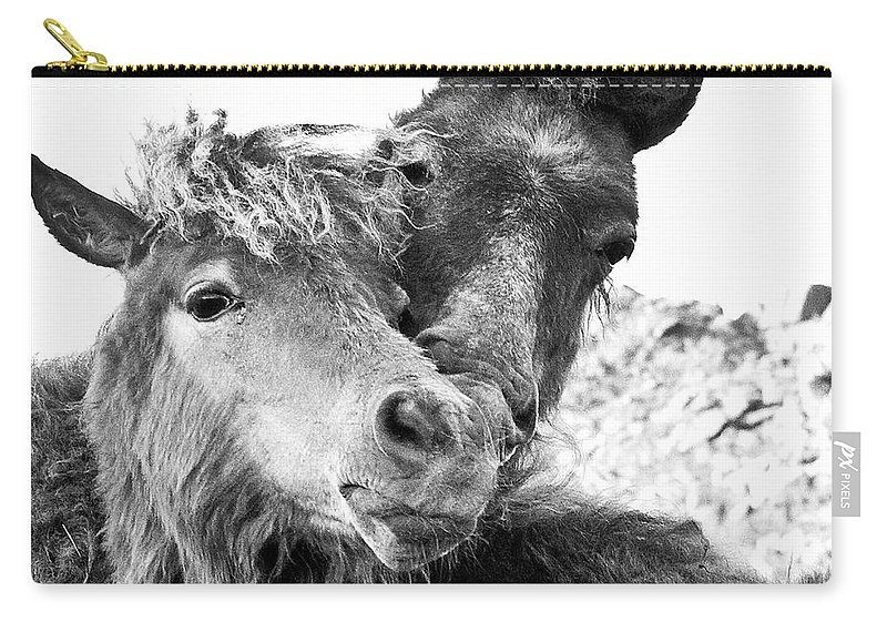 Working Animal Carry-all Pouch featuring the photograph Dartmoor Ponies by Adam Hirons Photography