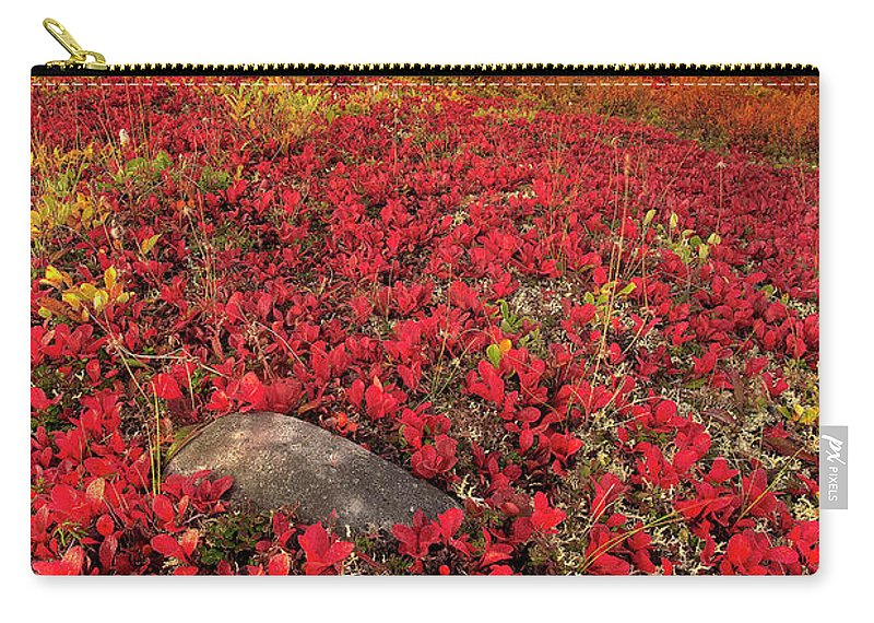 Scenics Carry-all Pouch featuring the photograph Denali National Park Fall Colors by Kevin Mcneal