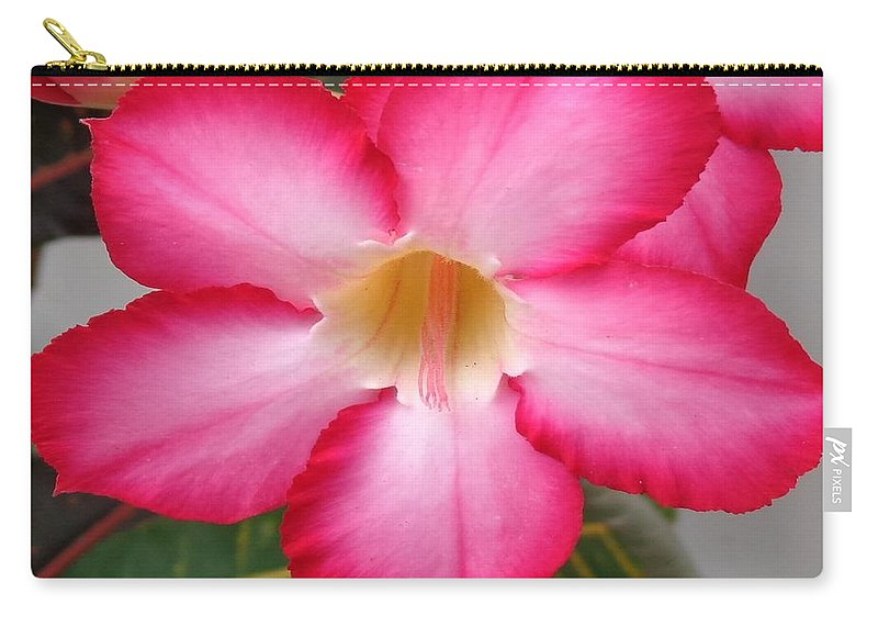 Rose Carry-all Pouch featuring the photograph Desert Rose by Rusty Gouveia