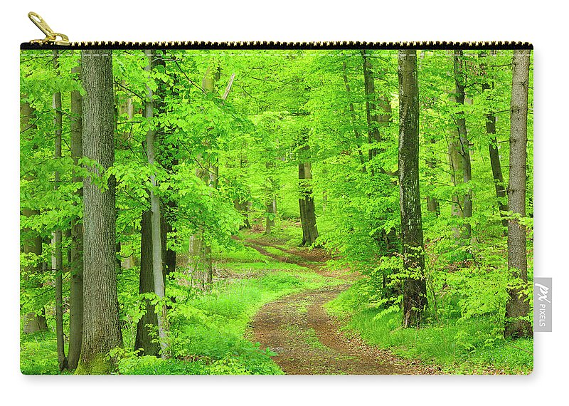 Environmental Conservation Carry-all Pouch featuring the photograph Dirt Road Through Lush Beech Tree by Avtg