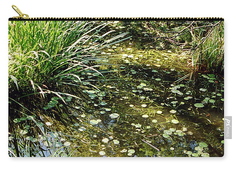 Landscape Carry-all Pouch featuring the photograph Dnrs1010 by Henry Butz