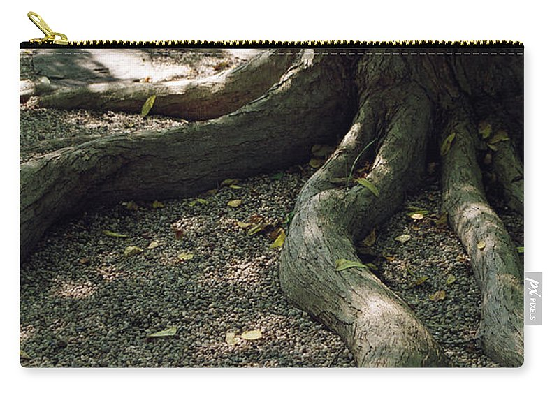 Landscape Carry-all Pouch featuring the photograph Dnrs1017 by Henry Butz