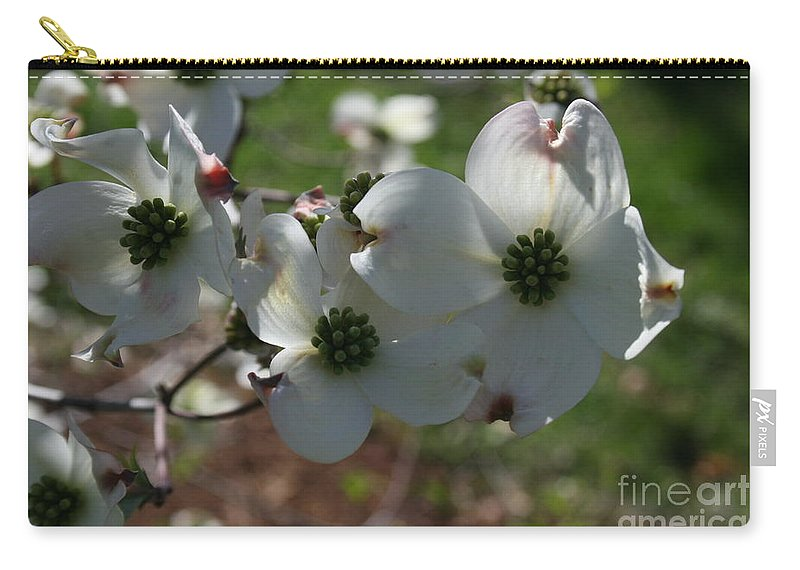 Highland Productions Llc  Darren Dwayne Frazier  Dogwood Tree  Blooming Dogwood Carry-all Pouch featuring the photograph Dogwood 2019 I by Darren Dwayne Frazier
