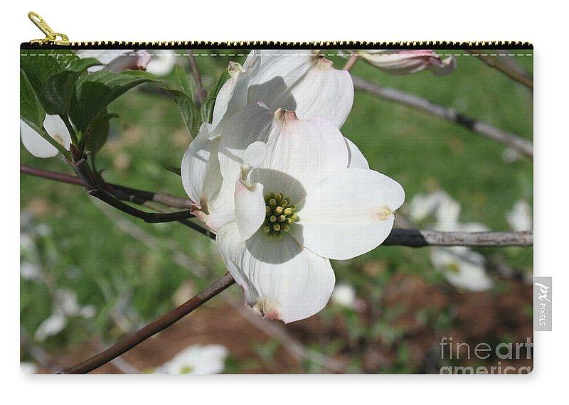 Highland Productions Llc  Darren Dwayne Frazier  Dogwood Tree White Petals  Full Sun Carry-all Pouch featuring the photograph Dogwood 2019 IIi by Darren Dwayne Frazier