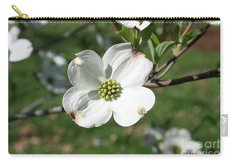 Highland Productions Llc  Darren Dwayne Frazier  Dogwood Tree  White Petals  Full Sun   Single Branch Carry-all Pouch featuring the photograph Dogwood 2019 Iv by Darren Dwayne Frazier