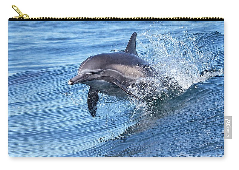 Wake Carry-all Pouch featuring the photograph Dolphin Riding Wake by Greg Boreham (treklightly)