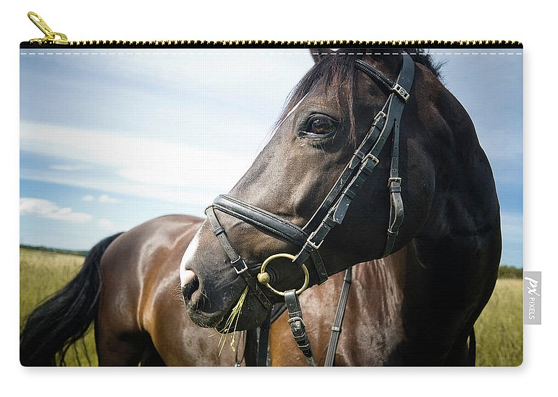 Horse Carry-all Pouch featuring the photograph Dont Look Back by Pixalot