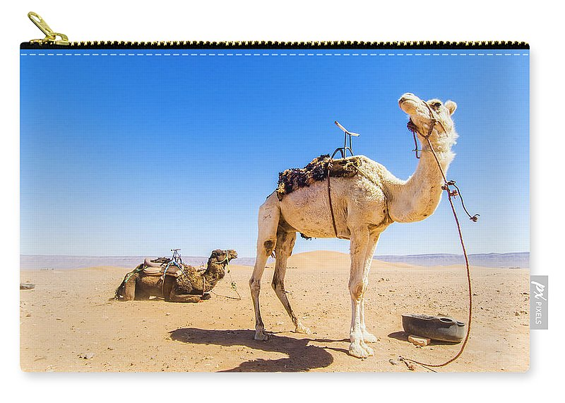 Working Animal Carry-all Pouch featuring the photograph Draa Valley, Camel At Tinfou by Maremagnum