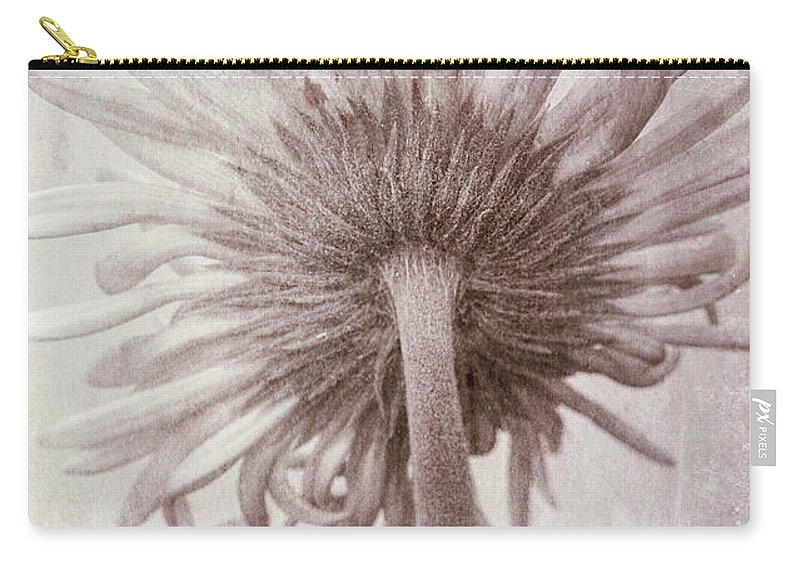 Photography Carry-all Pouch featuring the photograph Dream World by Susan Campbell