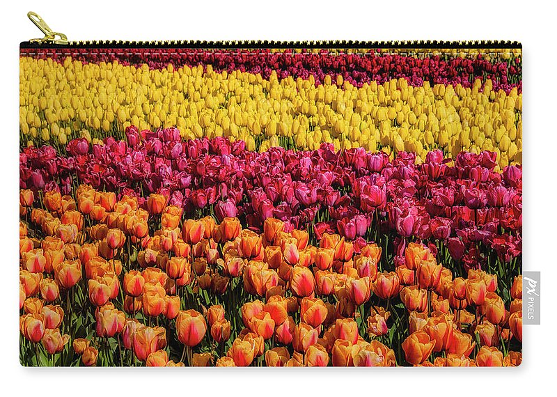 Tulip Carry-all Pouch featuring the photograph Dreaming Of Endless Colorful Tulips by Garry Gay