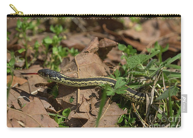 Arkansas Carry-all Pouch featuring the photograph Eastern Garter Snake - 9167 by Jerry Owens