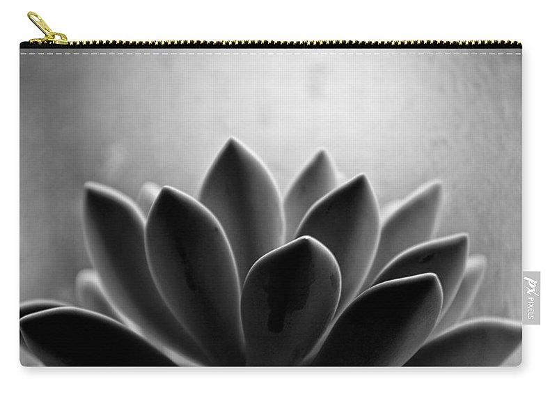 Petal Carry-all Pouch featuring the photograph Echeveria Setosa by Travis Payne