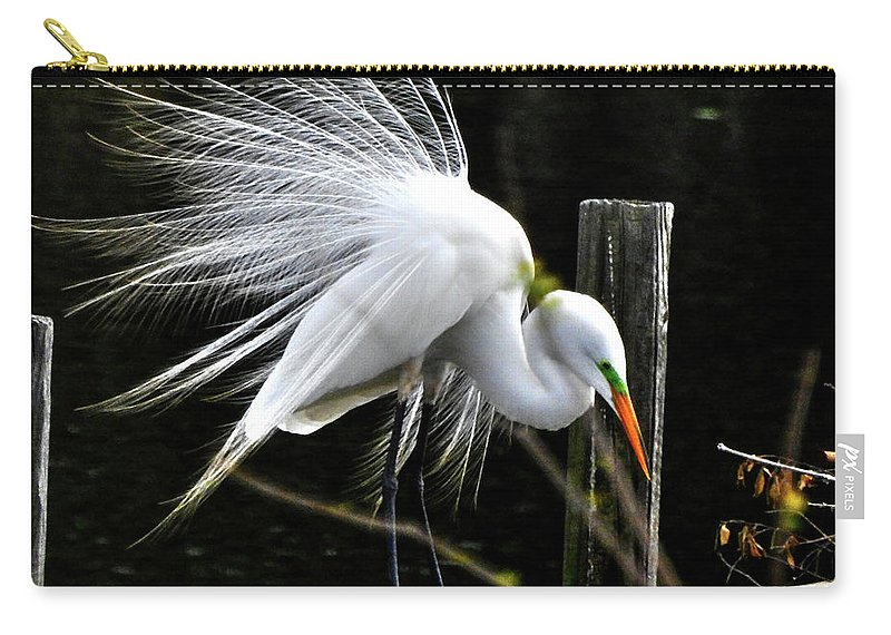 Egret Carry-all Pouch featuring the photograph Egret Pride by Charlotte Schafer