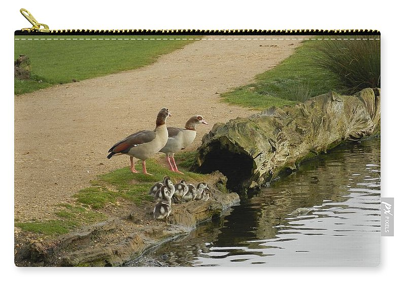 Eqyptian Geese Carry-all Pouch featuring the photograph Egyptian Geese by Lynne Iddon