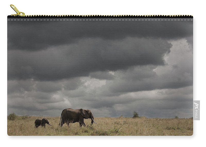 Kenya Carry-all Pouch featuring the photograph Elephant Under Cloudy Sky by Buena Vista Images