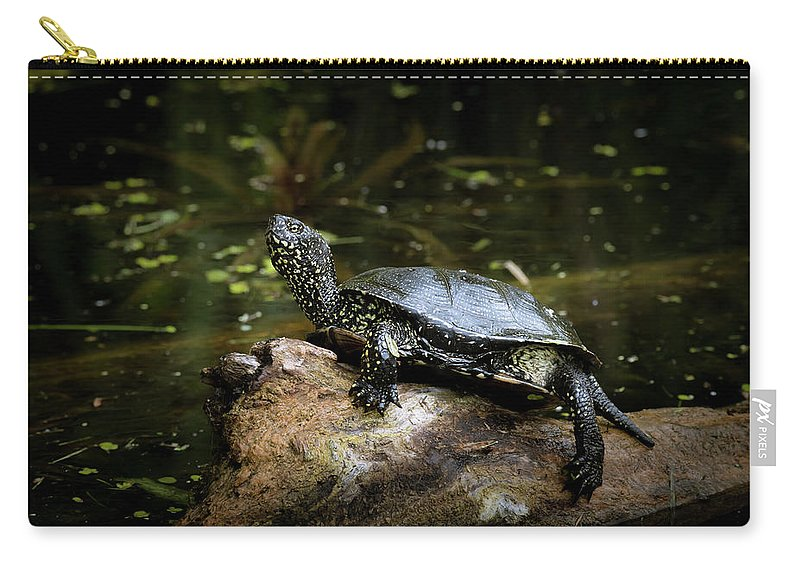 Water Carry-all Pouch featuring the photograph European Pond Turtle Sitting On A Trunk In A Pond by Stefan Rotter