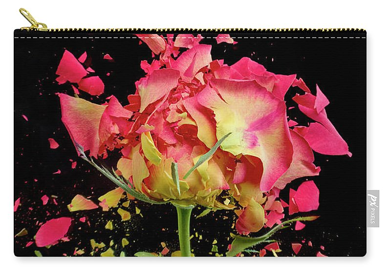 Black Background Carry-all Pouch featuring the photograph Exploding Rose by Don Farrall