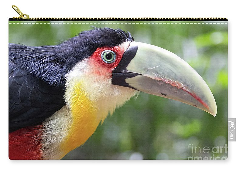 Toucan Carry-all Pouch featuring the photograph Eye On Eye by Leandro Rocha
