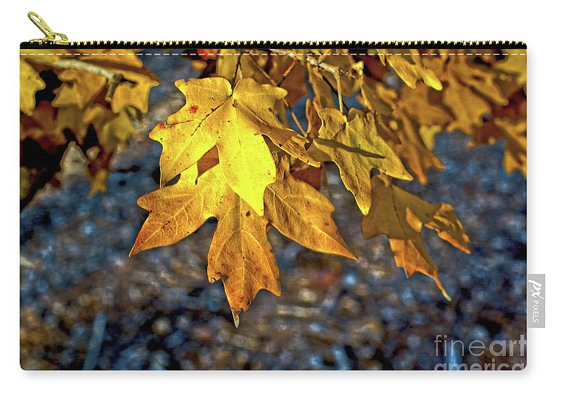 Fall Carry-all Pouch featuring the photograph Fall Has Sprung by Gary Richards