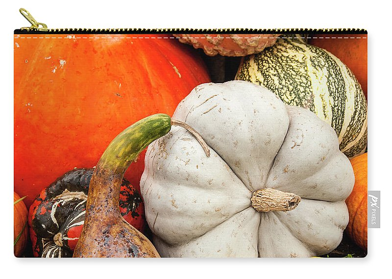 Season Carry-all Pouch featuring the photograph Fall Season Squash And Pumpkins by M Timothy O'keefe