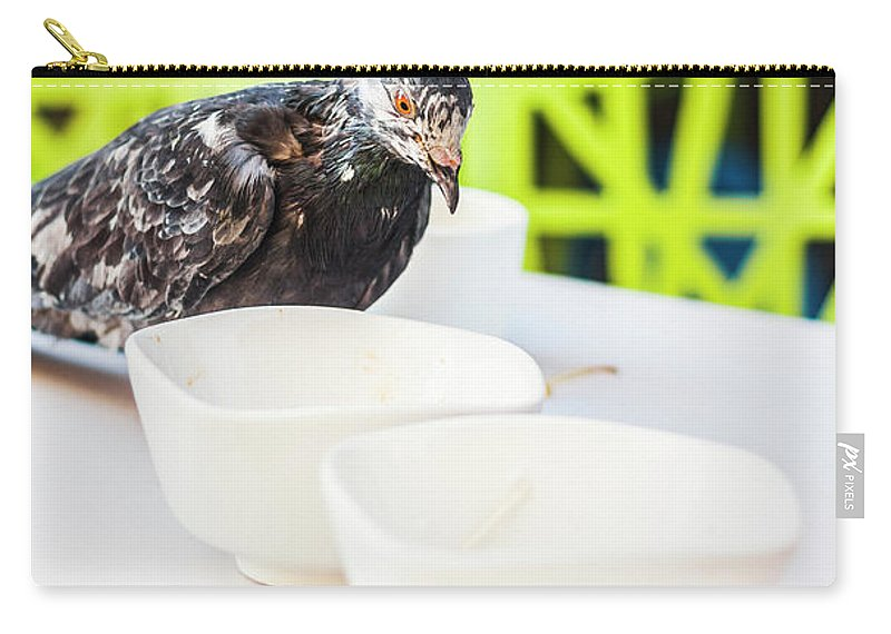 Bird Carry-all Pouch featuring the photograph Fast Food Asian Pigeon by Jorgo Photography - Wall Art Gallery