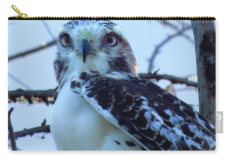 Carry-all Pouch featuring the photograph Fergie Up Close by Chad Vidas