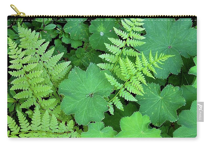 Outdoors Carry-all Pouch featuring the photograph Ferns And Ladys Mantle by Pamela Long