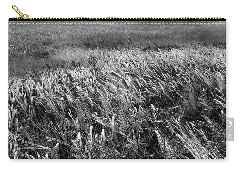 Nature Carry-all Pouch featuring the photograph Field With Poppies And Trees. Vertical. B And W by Vicente Sargues