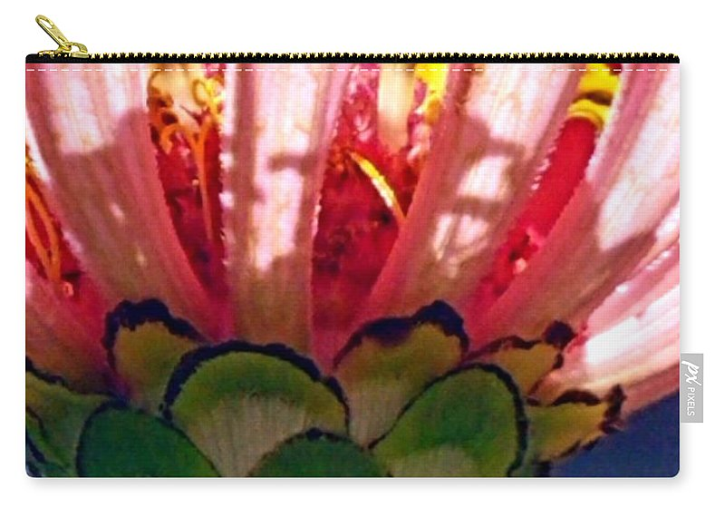 Carry-all Pouch featuring the photograph Filtered by Beverly Elliott