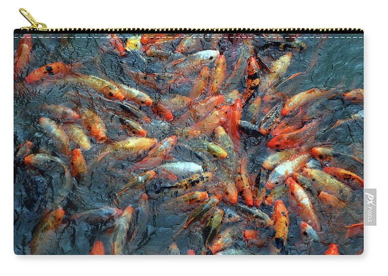 Underwater Carry-all Pouch featuring the photograph Fish Fight by Thomas Carroll