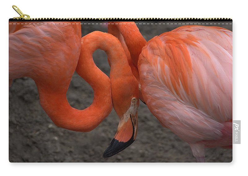 Flamingo Carry-all Pouch featuring the photograph Flamingo Couple by Charlotte Schafer