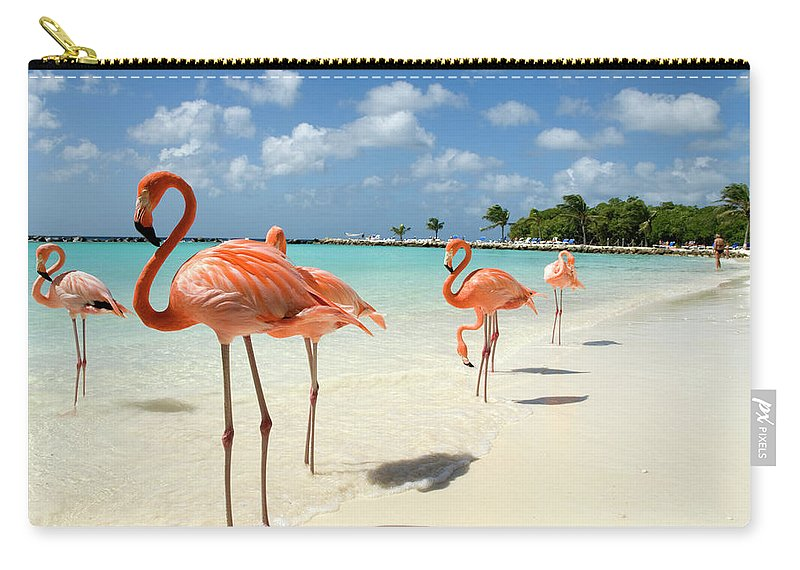 Shadow Carry-all Pouch featuring the photograph Flamingos On The Beach by Vanwyckexpress