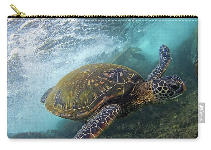 Maui Green Sea Turtle Ocean Carry-all Pouch featuring the photograph Flyby by James Roemmling