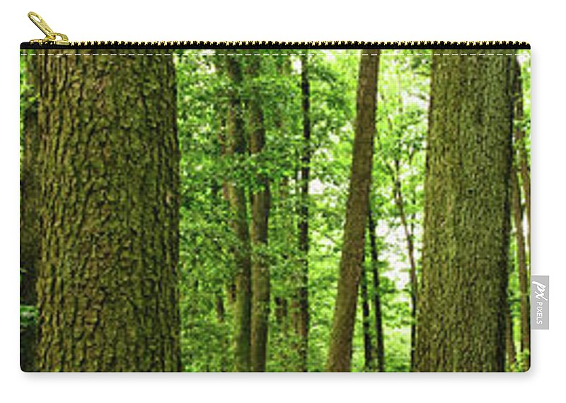 Scenics Carry-all Pouch featuring the photograph Footpath Between The Trees by Tomchat