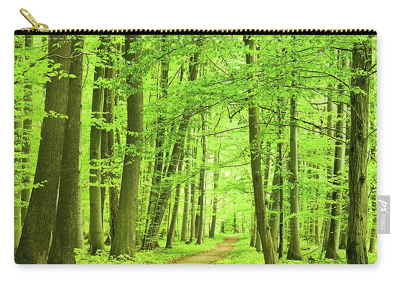 Curve Carry-all Pouch featuring the photograph Forest Path by Nikada