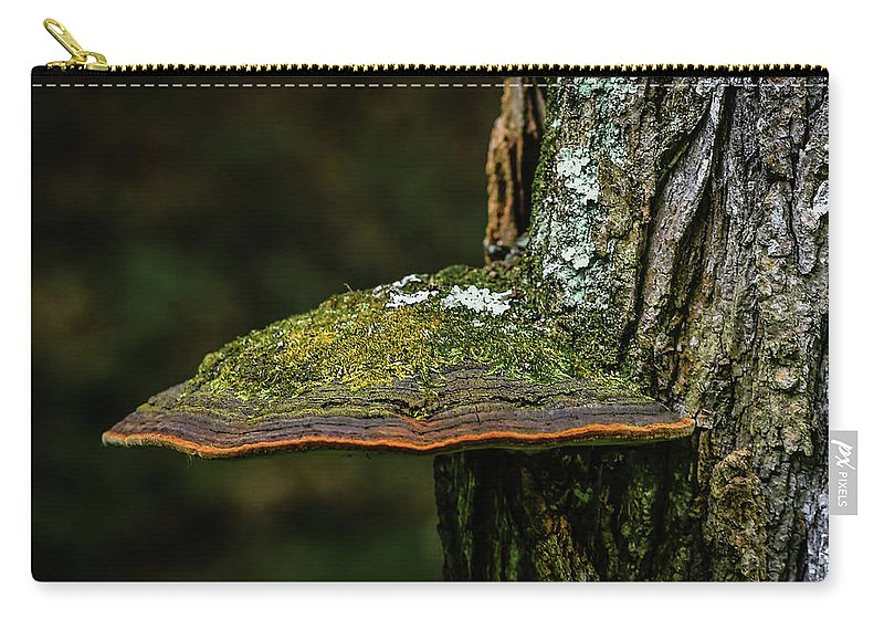 Turkey Tail Carry-all Pouch featuring the photograph Fungi 4648 by JT Strachan