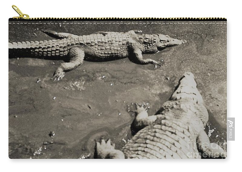 Big Carry-all Pouch featuring the photograph Gator Park Residence by Venancio Diaz