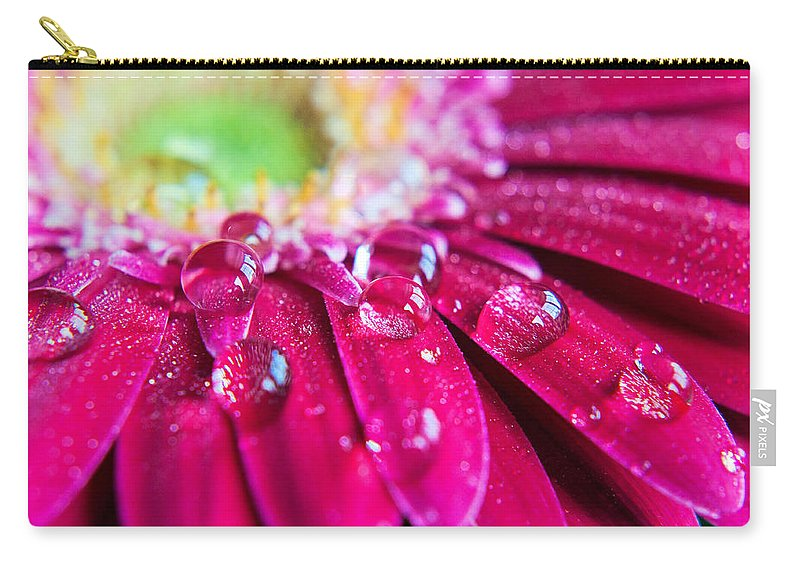 Petal Carry-all Pouch featuring the photograph Gerbera Rain Droplets by Michelle Mcmahon