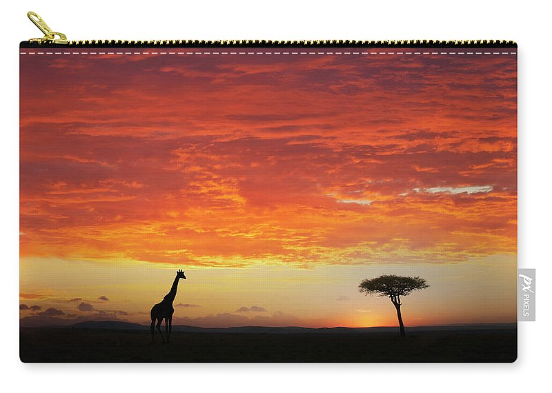 Kenya Carry-all Pouch featuring the photograph Giraffe And Acacia Tree At Sunset by Buena Vista Images
