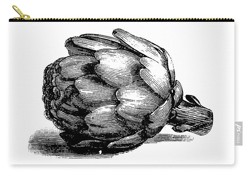 Italian Food Carry-all Pouch featuring the digital art Globe Artichoke   Antique Culinary by Nicoolay