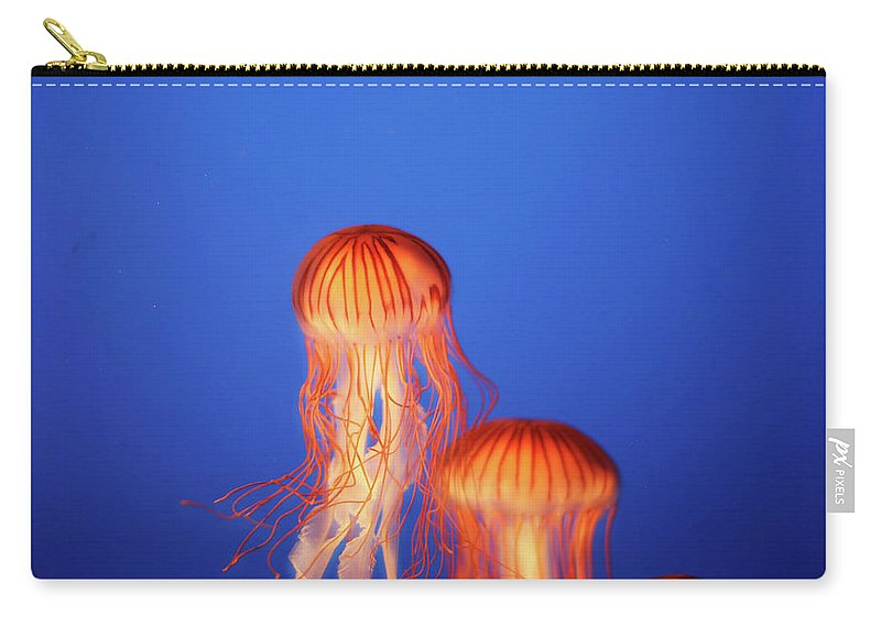 Underwater Carry-all Pouch featuring the photograph Glowing Jellyfish Under Water by Indy Randhawa