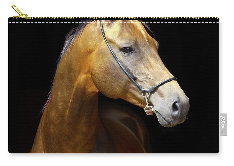 Horse Carry-all Pouch featuring the photograph Golden Horse by Photographs By Maria Itina