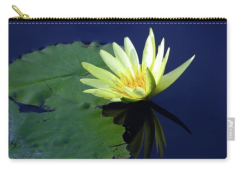 Water Lily Carry-all Pouch featuring the photograph Golden Lily by John Lautermilch