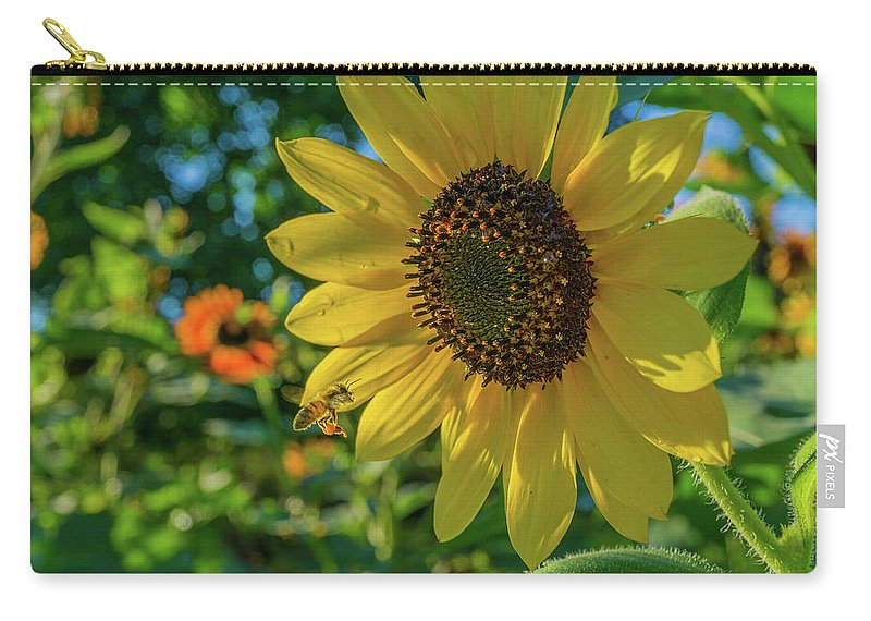 Sun Flower Carry-all Pouch featuring the photograph Got A Good Buz by Linda Howes