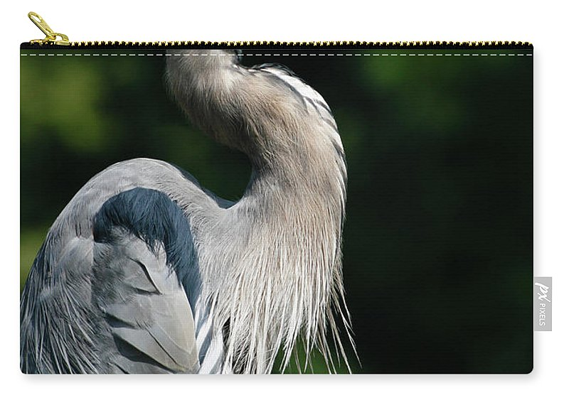 North Carolina Carry-all Pouch featuring the photograph Great Blue Heron by Bill Swindaman