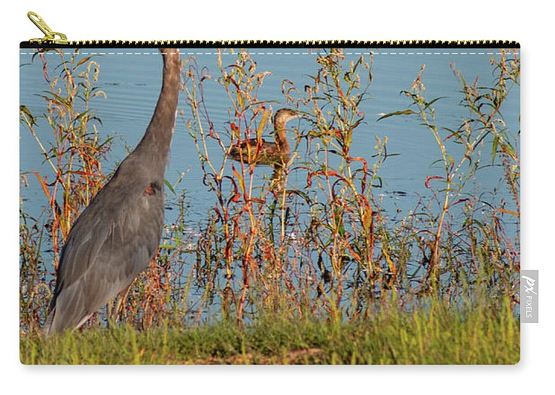 Great Blue Heron Carry-all Pouch featuring the photograph Great Blue Heron Looking For Food by Michael Munster