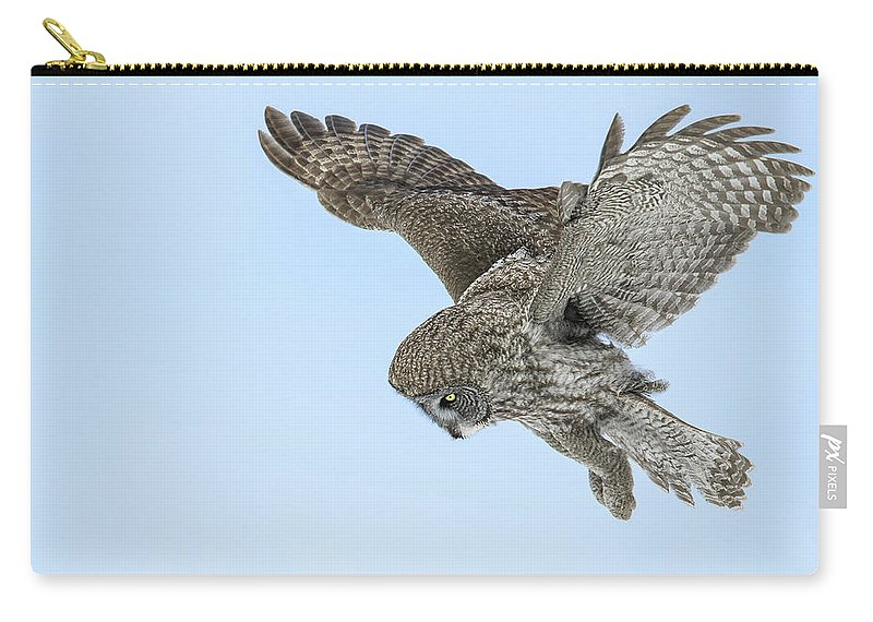 Greatgrayowl Carry-all Pouch featuring the photograph Great Gray Owl by Christopher Ciccone