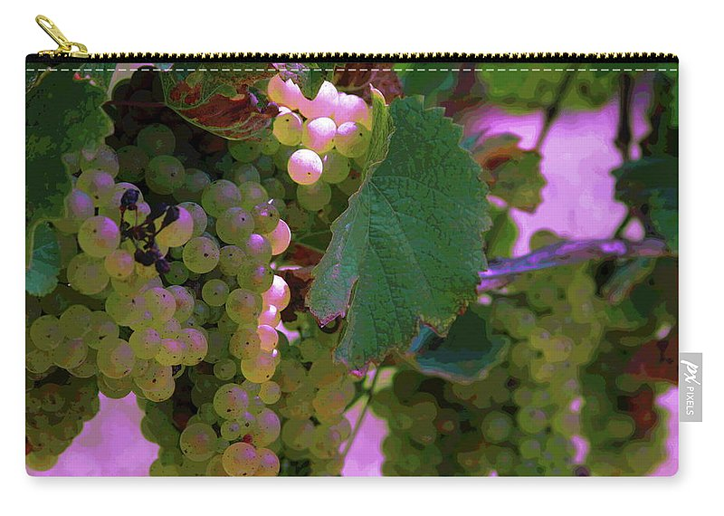 Green Grapes Carry-all Pouch featuring the photograph Green Grapes On The Vine 12 by Cathy Lindsey