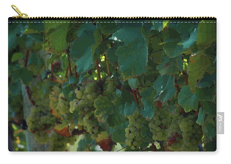 Green Grapes Carry-all Pouch featuring the photograph Green Grapes On The Vine 4 by Cathy Lindsey